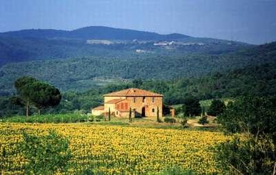 Villa Felciai Tuscany - Chianti area